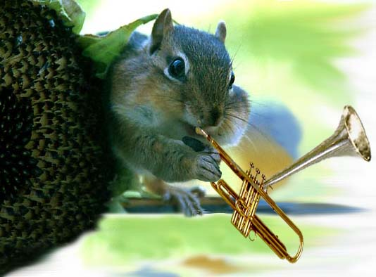 Squirrel with trumpet