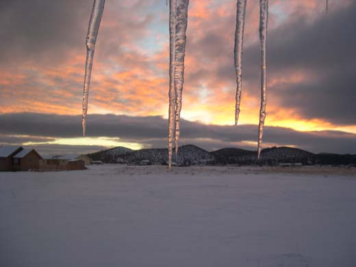 Dawn Icicles